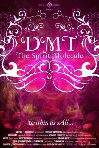 """""""DMT:"""
