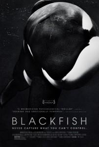 """Blackfish"